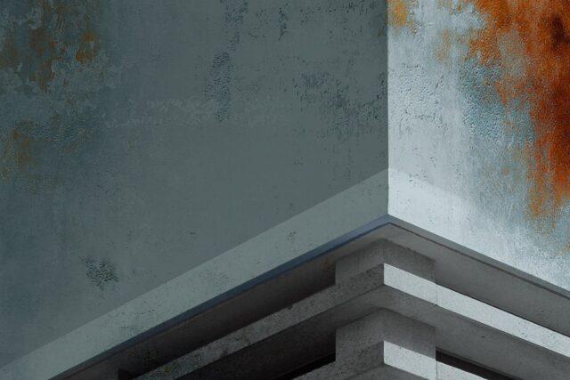 thumbnail_IL LEGNO E LA PAROLA 600 X 900